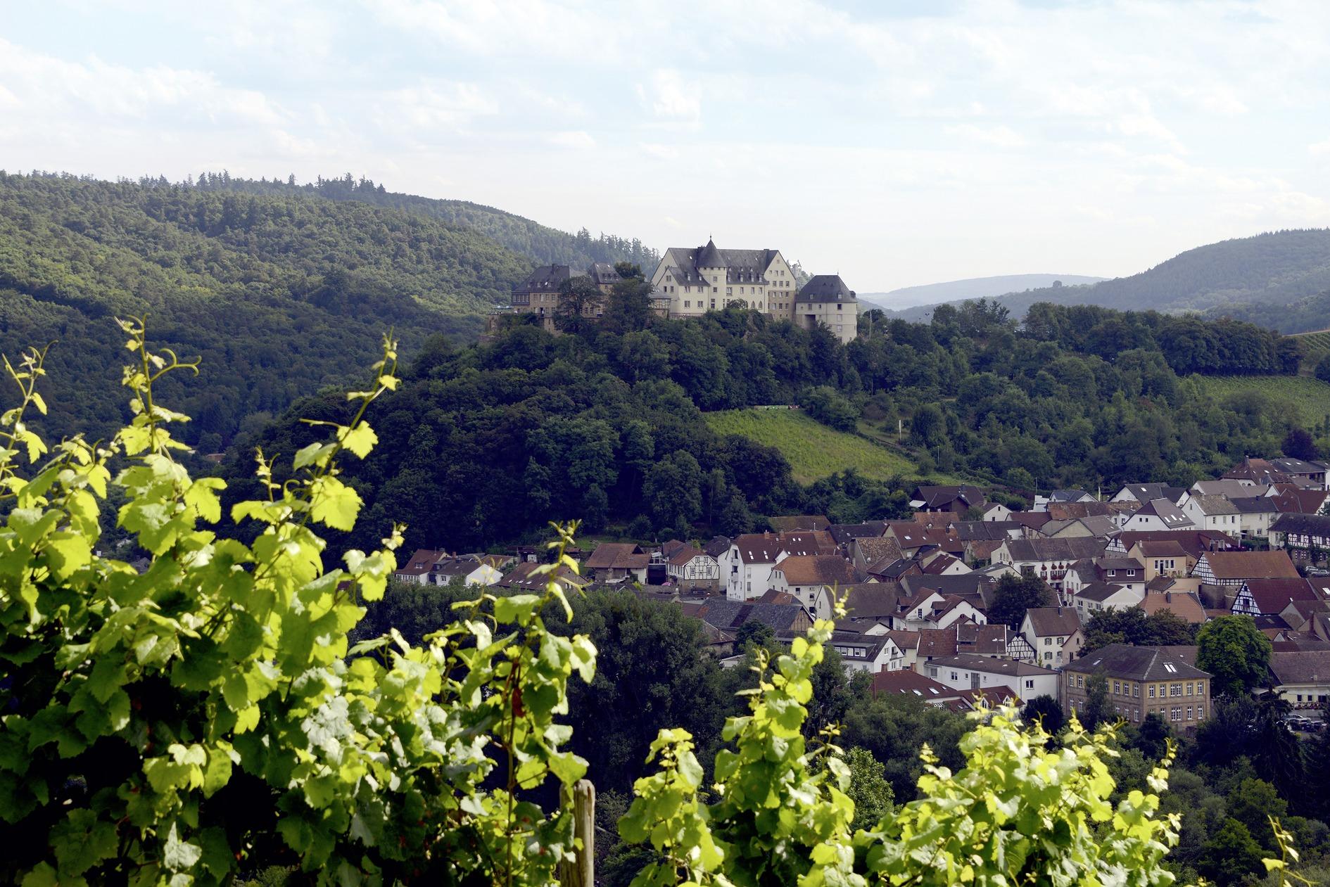 Buchinger Fasten Burg Ebernburg LAGOM by Carlsson