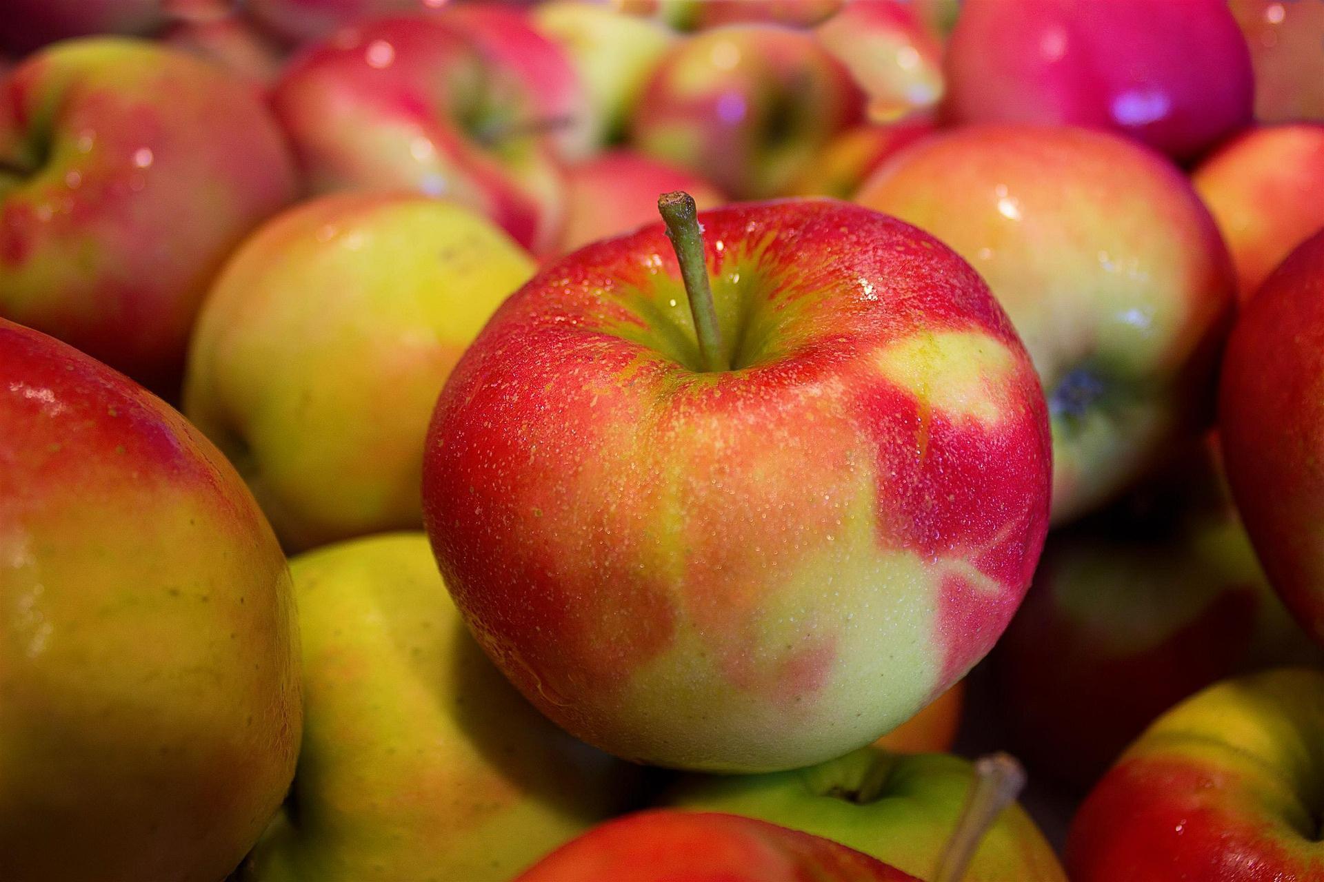 Äpfel - LAGOM by Carlssn
