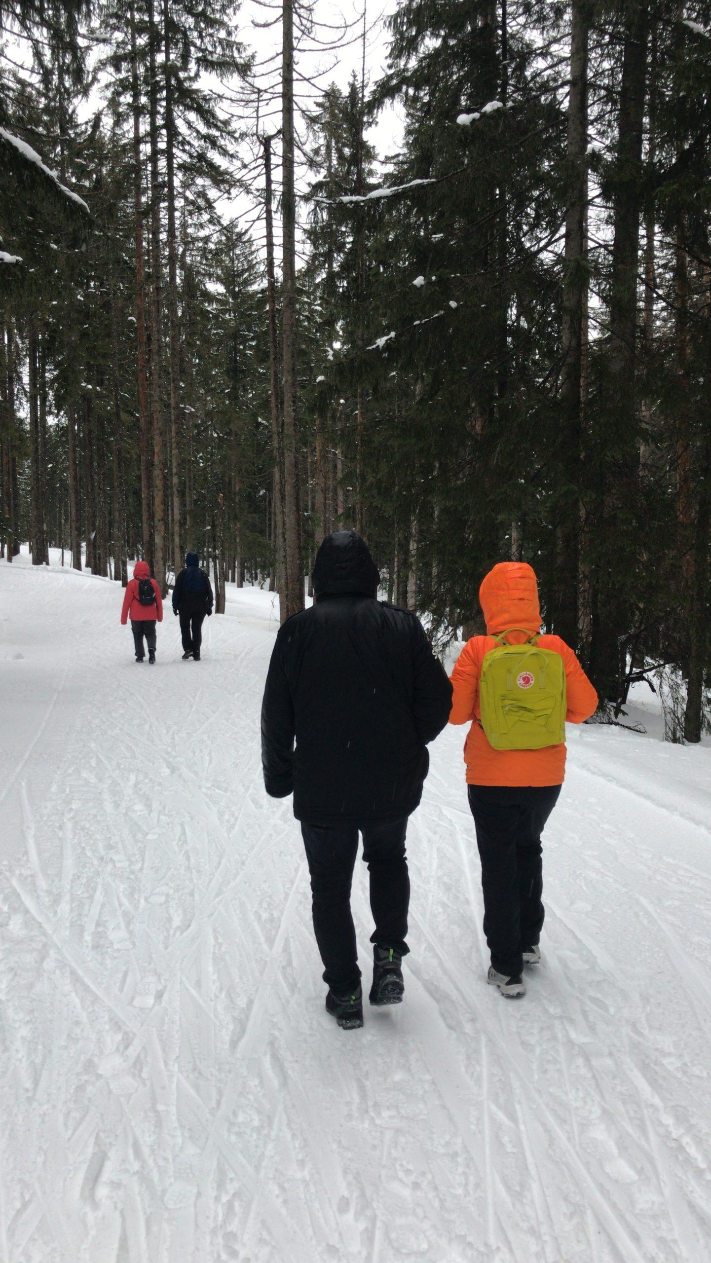 Heilfasten Oberstaufen