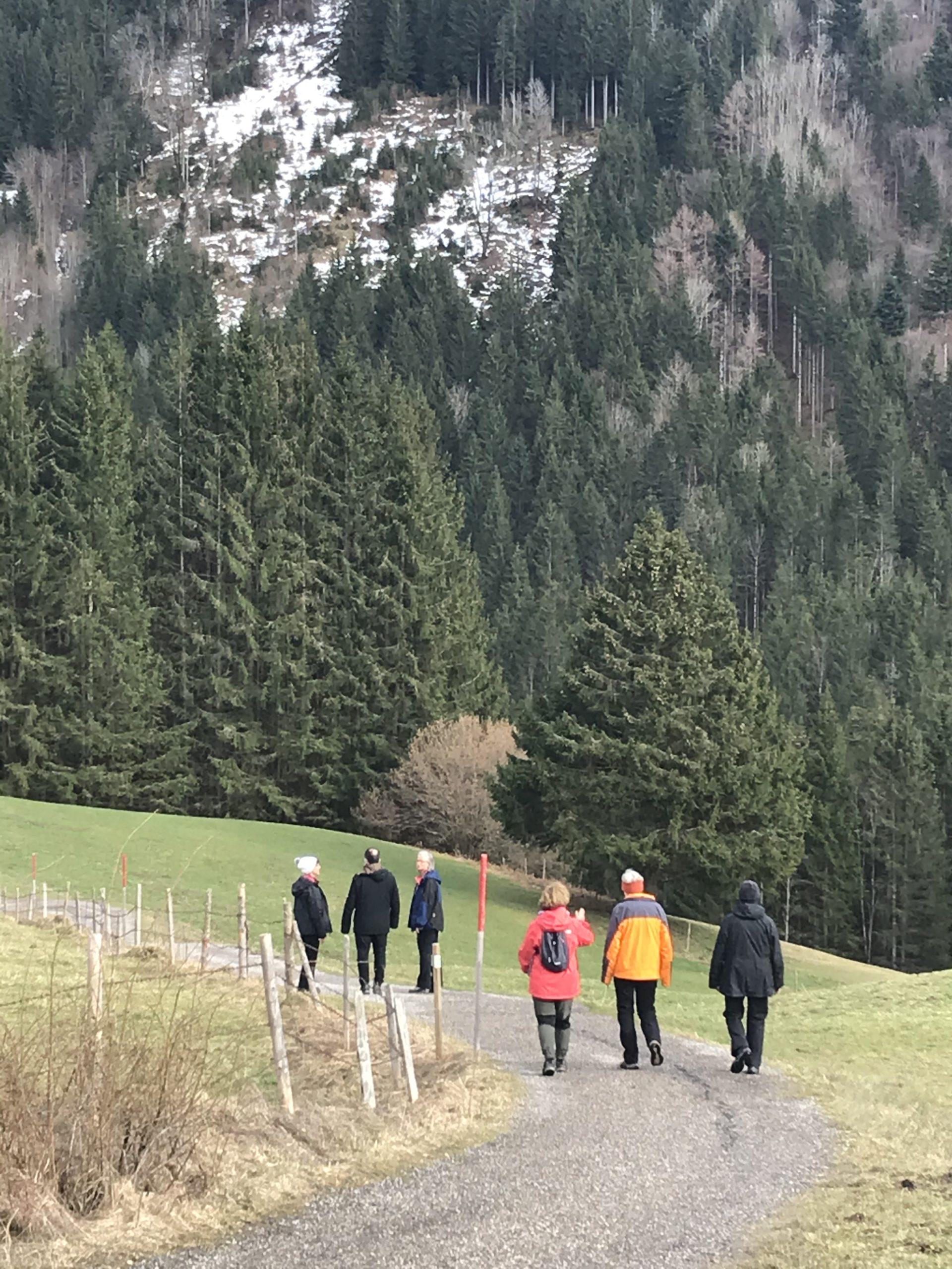 Fastenwandern Oberstaufen